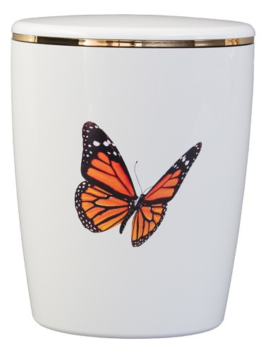 Kreativ-Urne Schmetterling