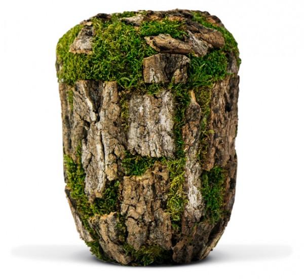 Naturstoffurne Baum-Optik Korkeiche
