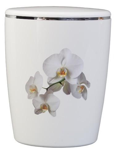Kreativ-Urne Orchidee